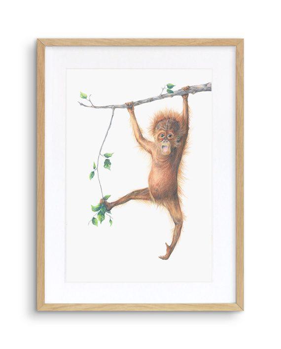 Orangutan Print Oak Frame