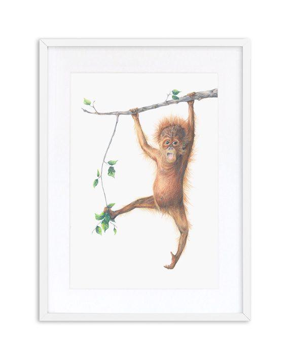 Orangutan Print White Frame