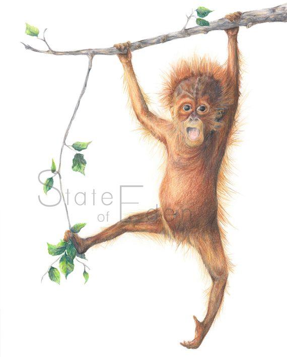 Orangutan wall print nursery artwork, orangutan drawing, monkey print,