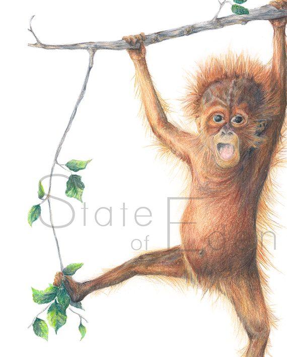 Orangutan mini print watermarked