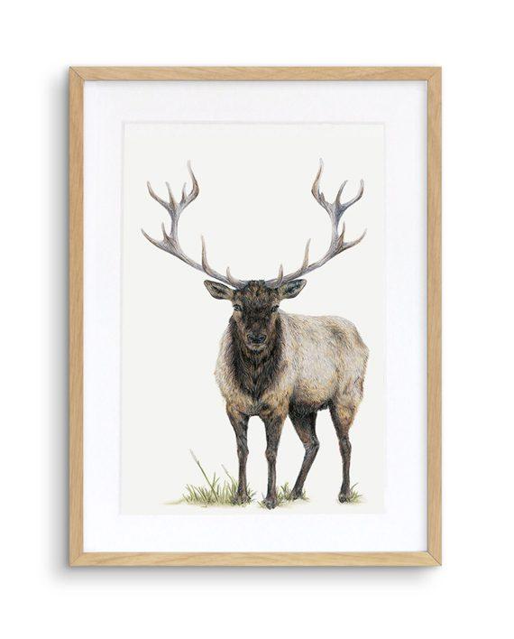 Elk Print Oak Frame