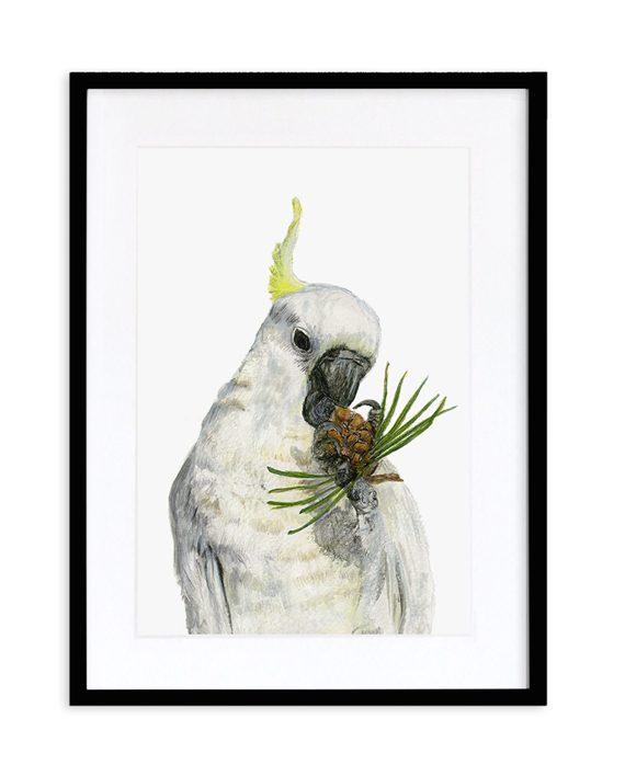 Cockatoo Print Black Frame