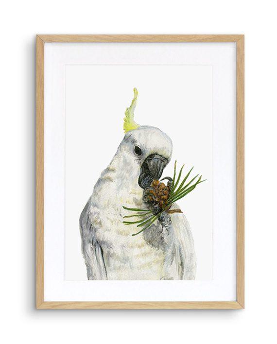 Cockatoo Print Oak Frame