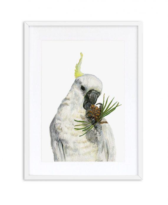 Cockatoo Print White Frame