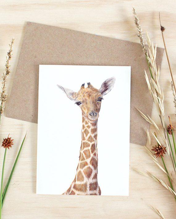 Giraffe Card, Plain SoE