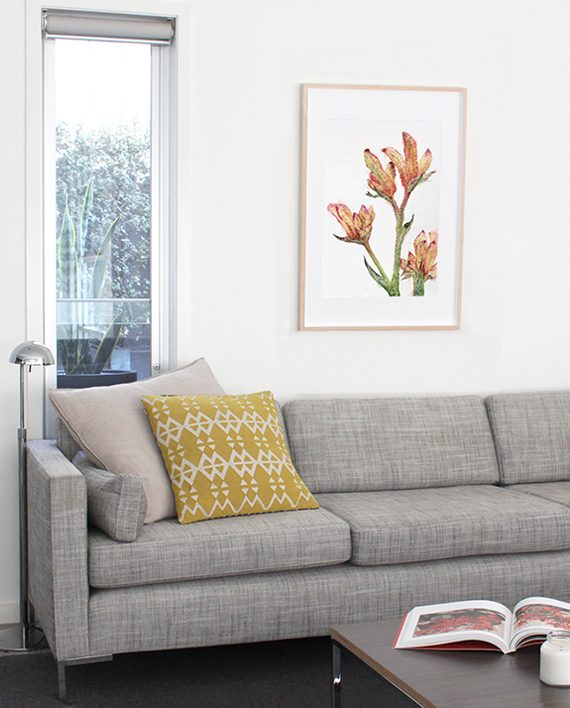 Kangaroo Paw Print Home Decor State of Eden