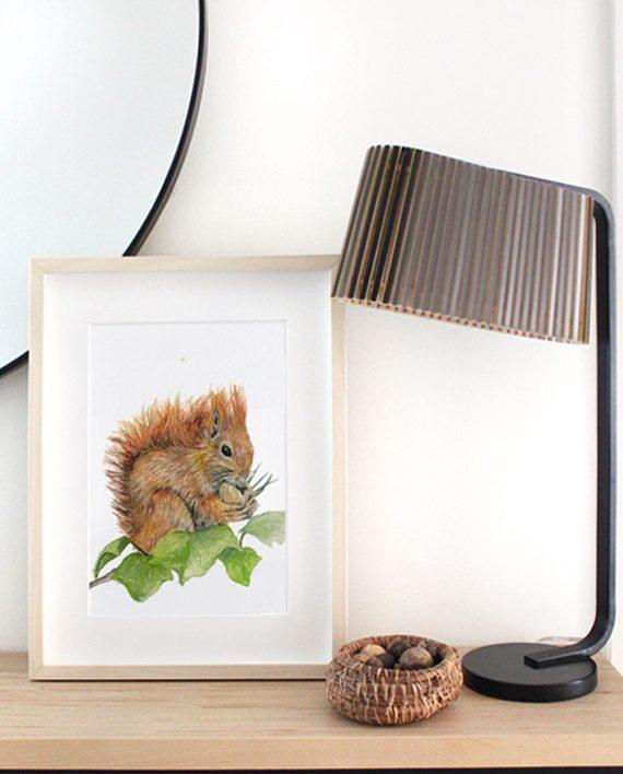Squirrel Print Home Decor SoE