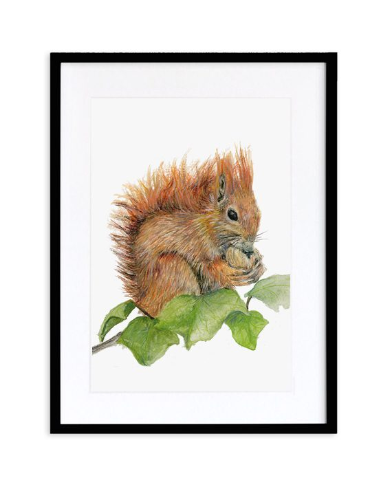 Squirrel Print Black Frame