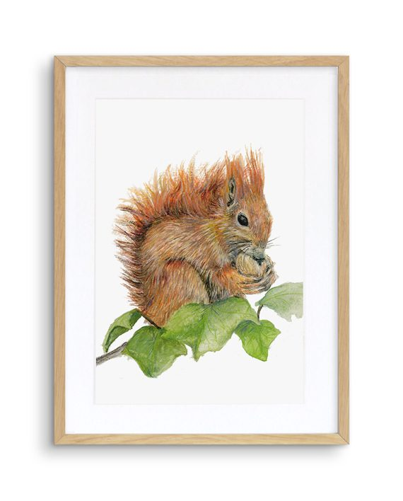 Squirrel Print Oak Frame