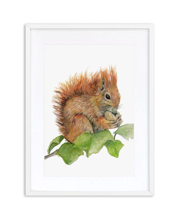 Squirrel Print White Frame