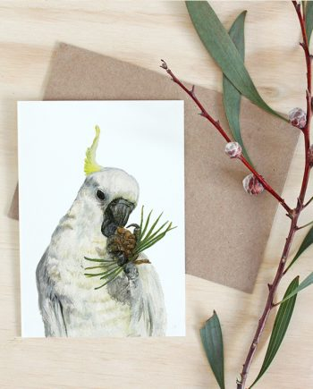 Cockatoo Card, Australian animal card, Australian card