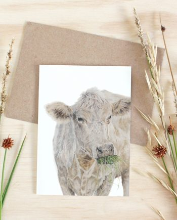 Cow Card plain State of Eden