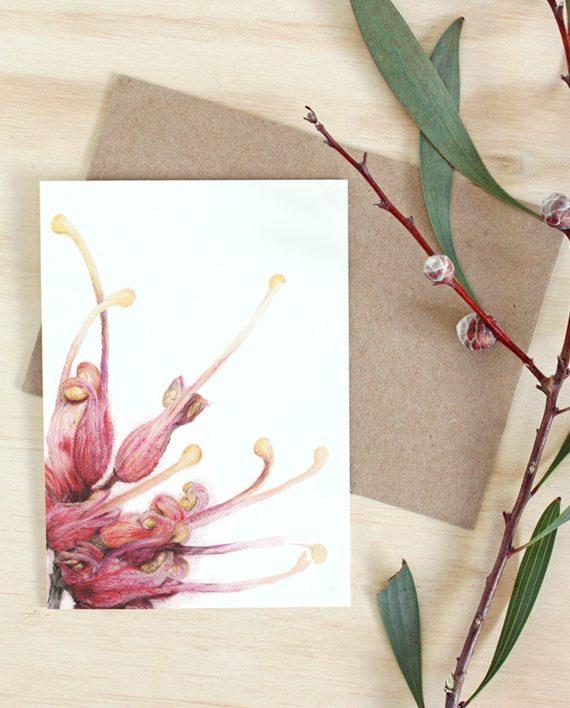 Grevillea card, Australian Native flower card, SoE