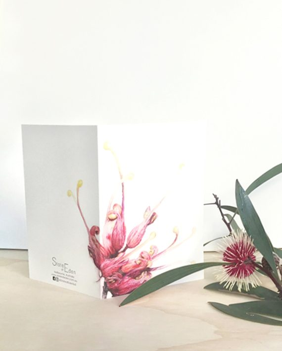 Grevillea Card, Happy Birthday card, Mother's Day card