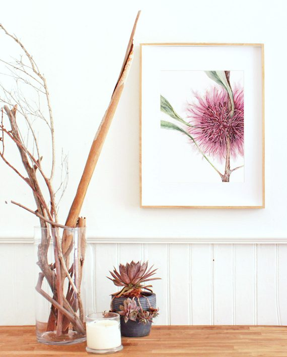 Hakea print home decor State of Eden