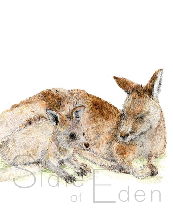 Kangaroo Mini print artwork SoE
