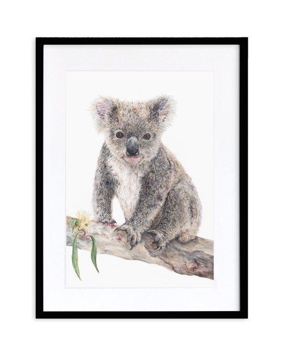 Koala Print Black Frame State of Eden