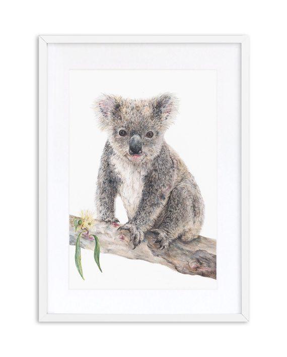Koala Print White Frame State of Eden