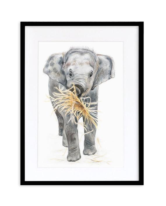 Elephant print artwork framed Black