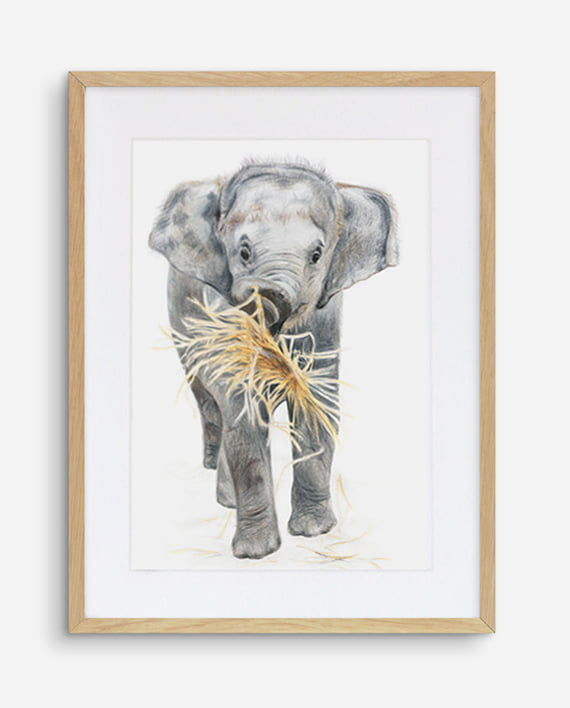 Elephant print artwork framed Oak