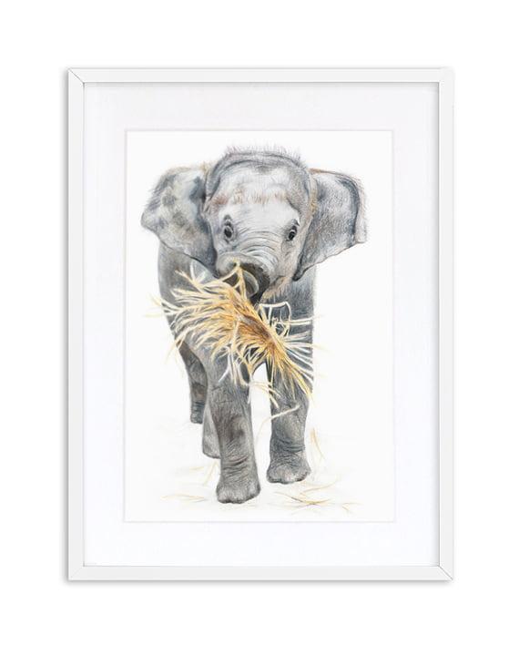 Elephant print artwork framed White